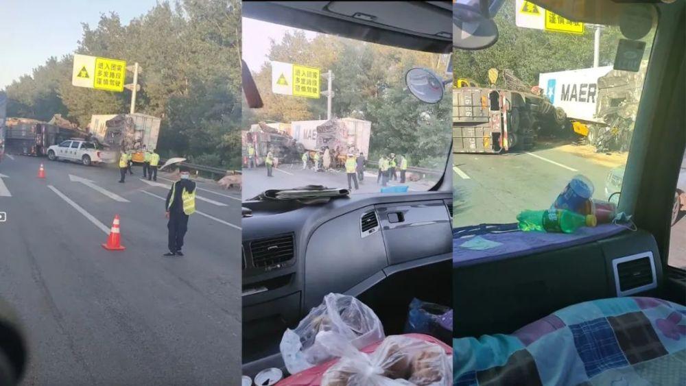 葫芦岛兴城服务区附近一辆拉猪车和集装箱车相撞,猪受损严重!
